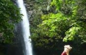 Pura Vida – Costa Rica, Central America