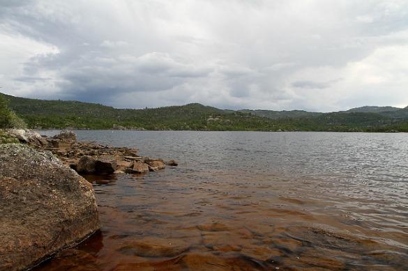 selma (lake monster)